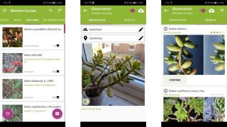 Top Android Application Free Download