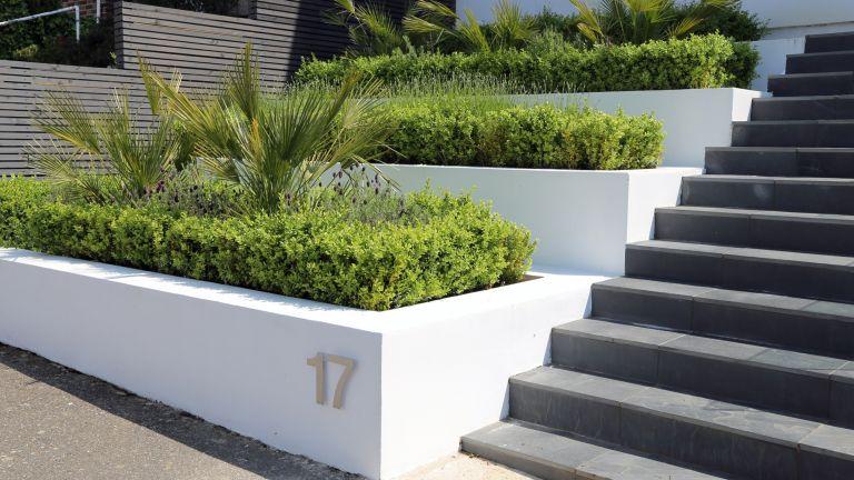 front garden wall ideas: tiered front garden with modern white rendered garden walls