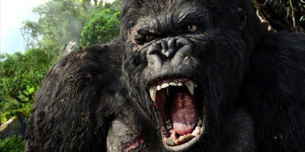 fca4ab935f2482cb596911e3a01e9f6f92c4853fd176f12f0269ac3a94cd1f43 3 Kong: Skull Island quay trở lại vượt hơn mong đợi của fan hâm mộ