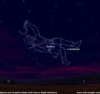 Herding Stars: What the Ancients Saw in the Sky