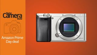 Sony A6000 body only silver