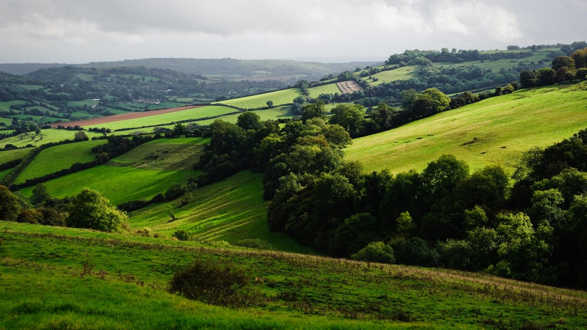 The best walks in the Cotswolds: idyllic hikes in quintessential English countryside