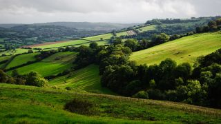 best walks in the Cotswolds: Cotswold countryside
