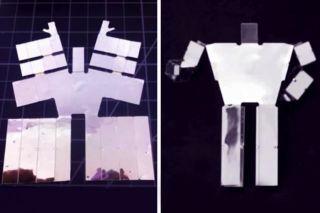 Self-Assembling Robot
