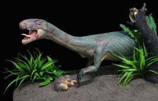 early dinosaur cousin