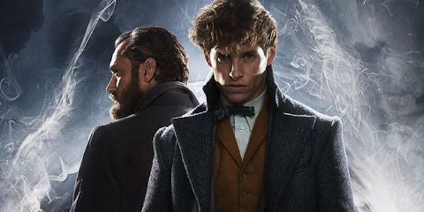 New Scamander Albus Dumbledore back to back