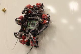 ESA's gecko-inspired robot
