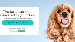 Cyber monday dog food deal