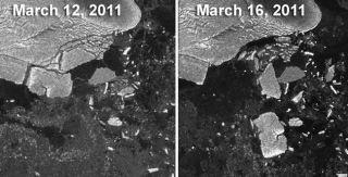 iceberg calved by japan tsunami