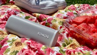 Sonos Roam review: A portable speaker you'll want to take everywhere