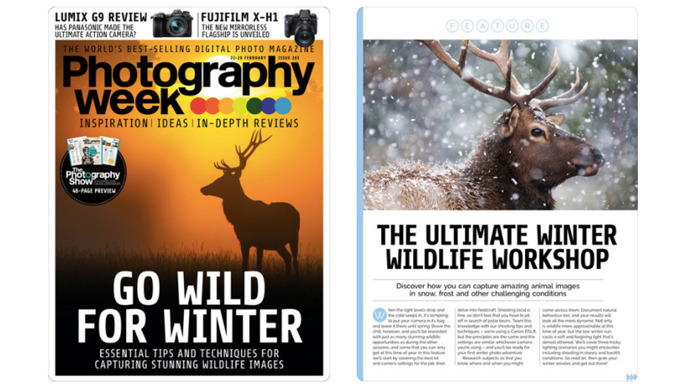 Photography Week front cover and article view