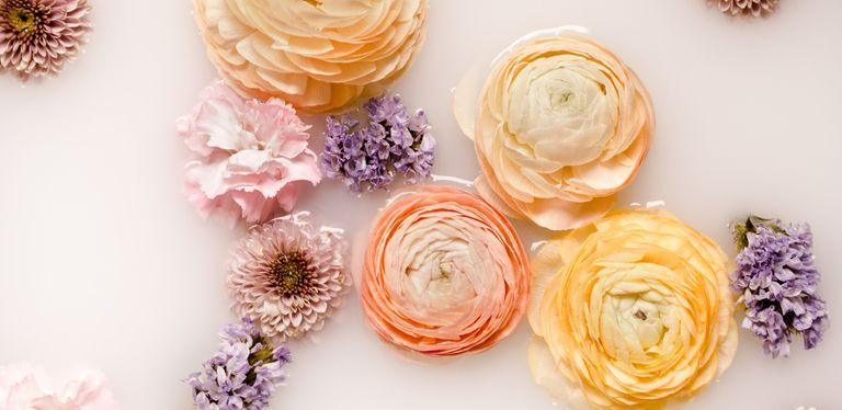 bath tea - flowers in a milk bath
