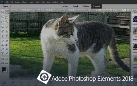 Adobe Photoshop Elements 2018 Review - Pros, Cons and
