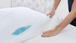 the best waterproof mattress protectors
