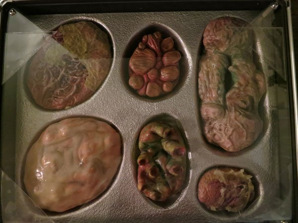 Pacific Rim Kaiju Organs 2