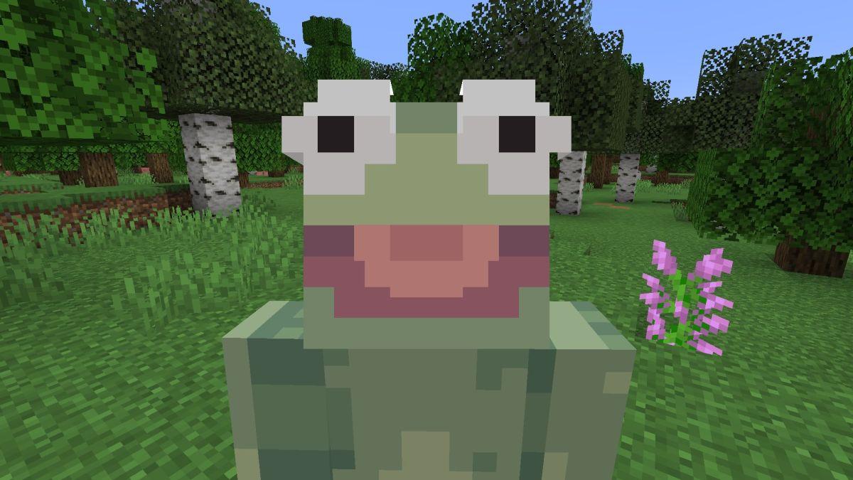 Best Minecraft skins on PC  PC Gamer