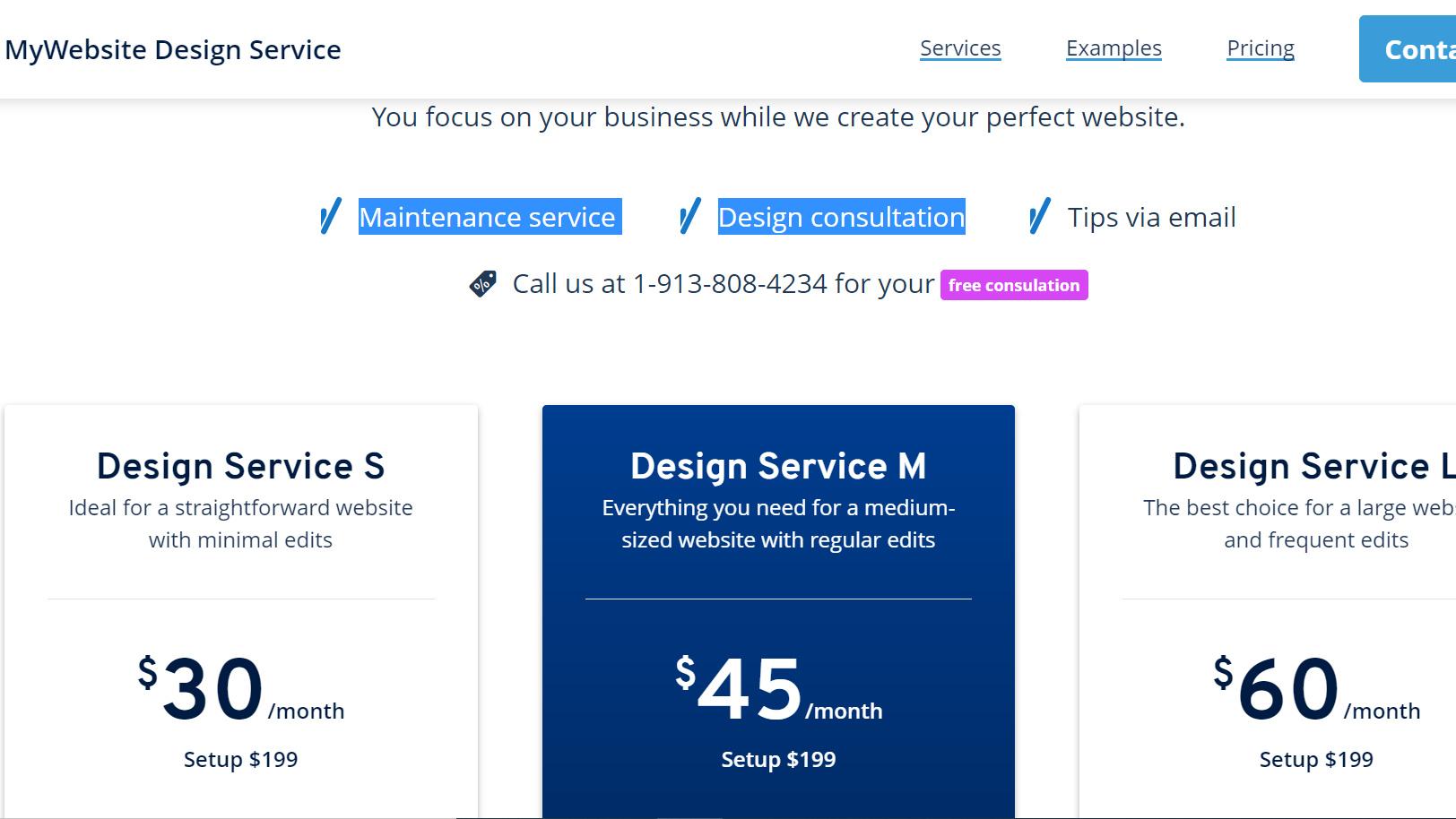 ionos website services