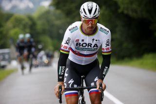 Peter Sagan of Bora-Hansgrohe during the Tour de France