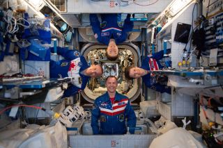 Expedition 59 astronauts snap a playful portrait in weightlessness aboard the International Space Station in this photo in the station's Harmony module taken on April 30, 2019. Seen here are: (Clockwise from top) NASA astronauts Anne McClain, Christina Koch, Nick Hague and Canadian Space Agency astronaut David Saint-Jacques