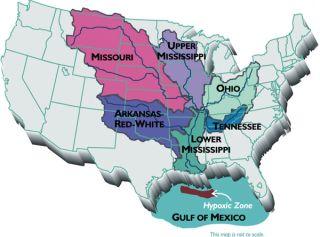 Gulf of Mexico Dead Zone Map
