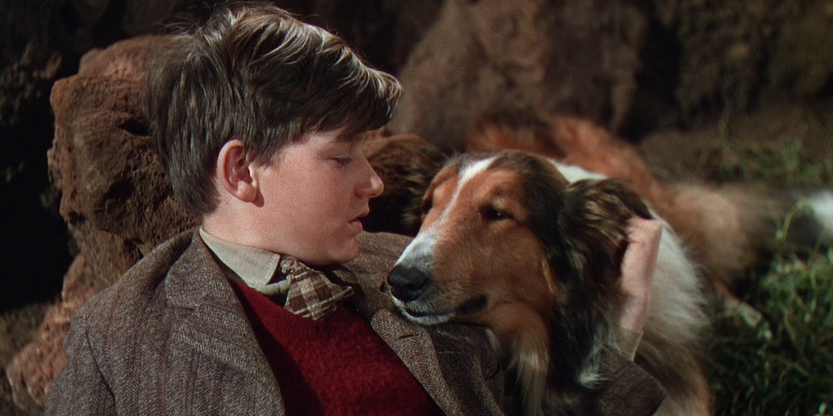 Lassie Come Home with Roddy McDowall