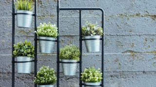 Top 10 garden design ideas for small backyards