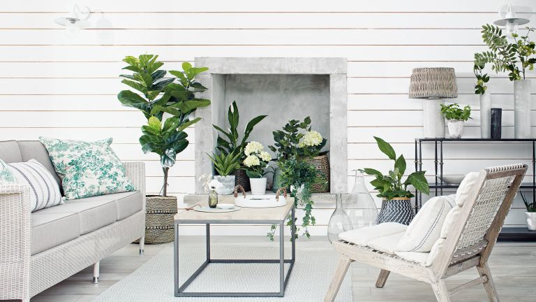 caring for indoor plants in winter
