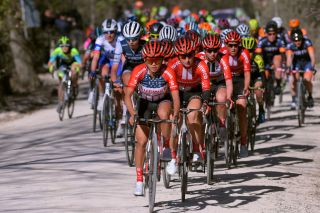 SIENA ITALY MARCH 09 Coryn Rivera of The United States and Team Sunweb Leah Kirchmann of Canada and Team Sunweb Liane Lippert of Germany and Team Sunweb Peloton during the 5th Strade Bianche 2019 Women a 136km race from Siena to Siena Piazza del Campo StradeBianche Eroica on March 09 2019 in Siena Italy Photo by Luc ClaessenGetty Images