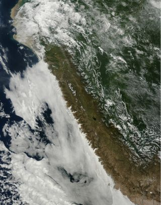 An instrument on NASA's Terra satellite captured this image of clouds hanging over the Peruvian coast, on June 7, 2015.