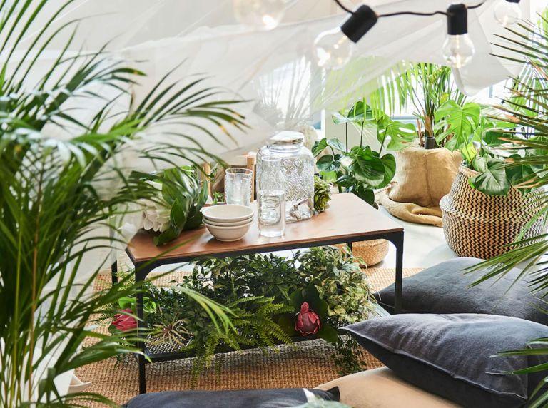 Ikea storage to house plants