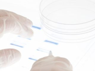 DNA testing identify a person based on the software of life.