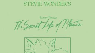 Stevie Wonder cover art