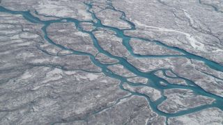 Algal blooms darken the ice sheet and cause increased melting.