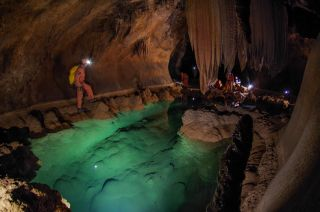 Astronauts Help Discover Newfound Crustacean During Cave Expedition