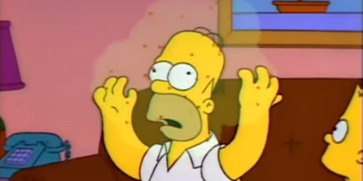 Homer Simpson The Simpsons Fox