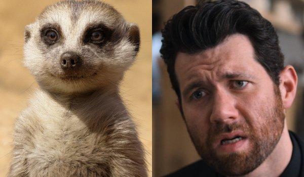 The Lion King Timon and Billy Eichner side by side