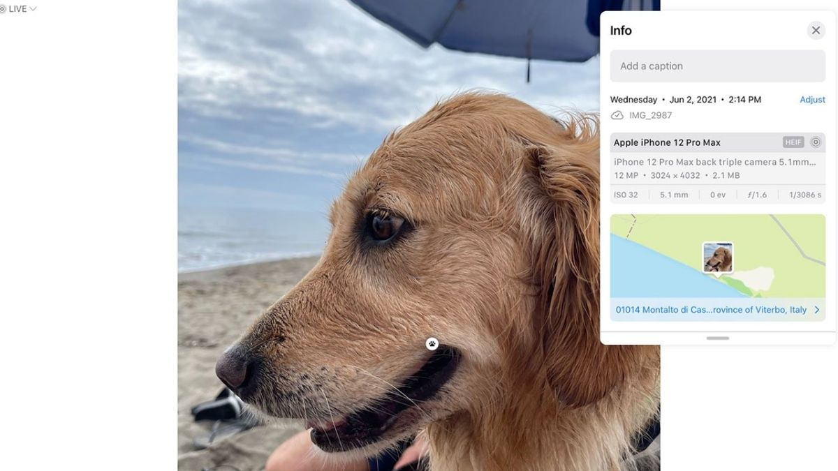 iOS 15 and iPhone 13 get EXIF data and deep-learned photo subject recognition