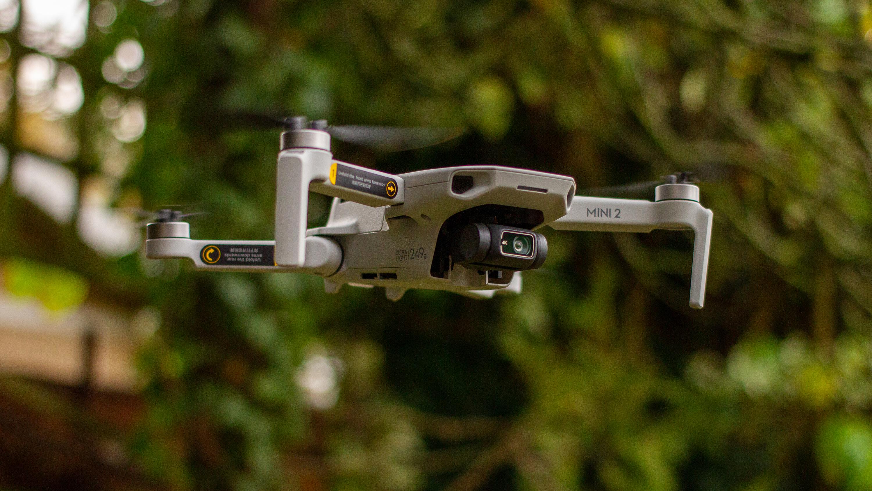 The DJI Mini 2 in flight in a garden
