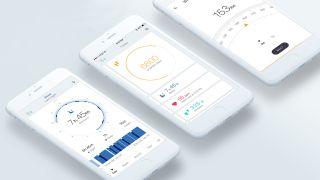 Amazfit app
