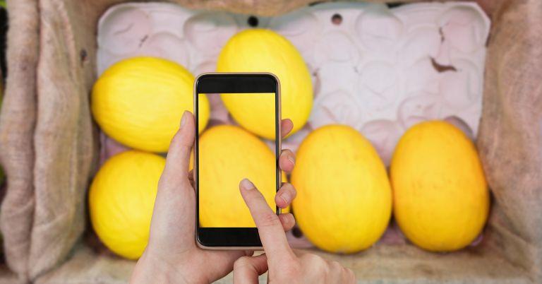 Ocado Black Friday: Lemons and mobile phone