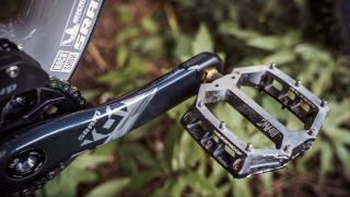 Nukeproof flat pedals for enduro (image credit: Nukeproof)