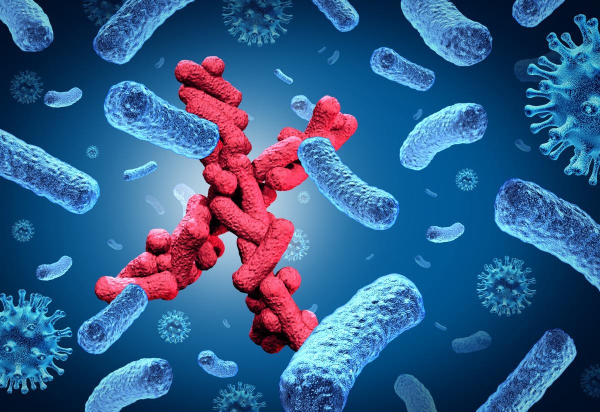 7 Penyakit ini masuk dalam prioritas tinggi untuk diawasi oleh WHO