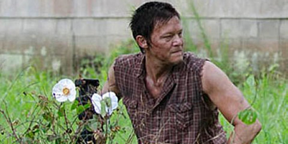 Daryl Dixon with the Cherokee rose in The Walking Dead.
