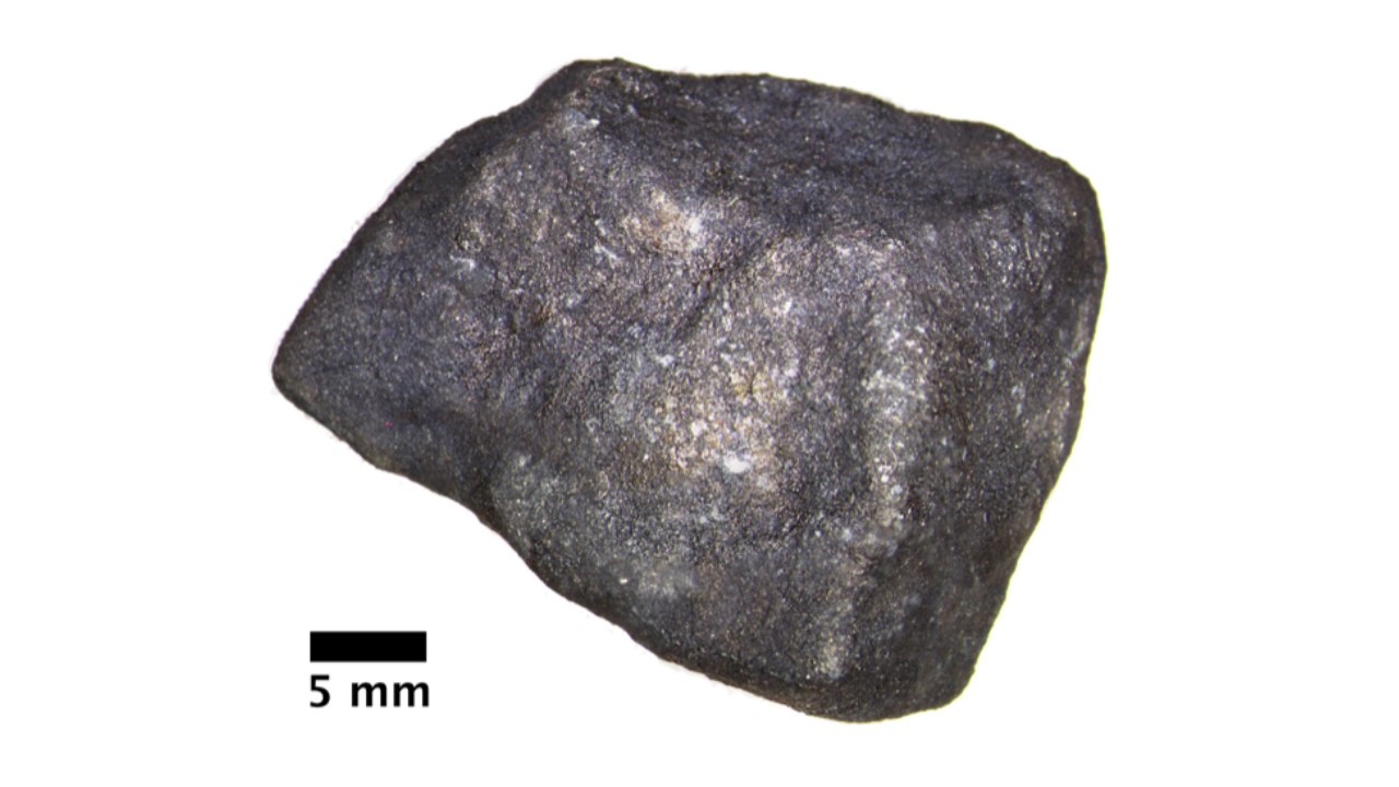 Optical micrograph of the complete Strawberry Lake meteorite (Hamburg ME 6108) before cutting.