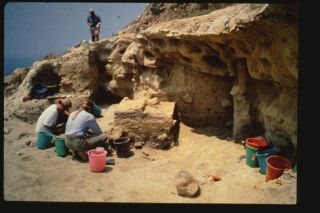 an excavation at a site on Cyprus
