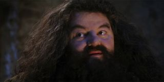Hagrid after letting Harry Potter know he's a wizard