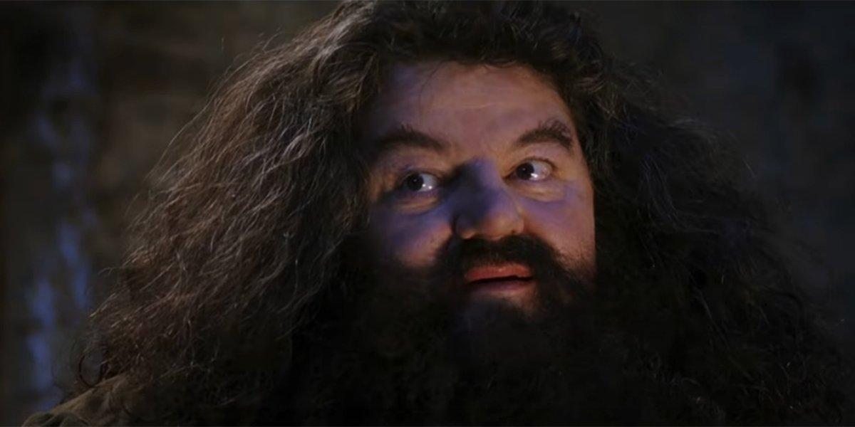 Universal Studios' Hagrid Rollercoaster Forced To Shut Down Due To Bee Infestation