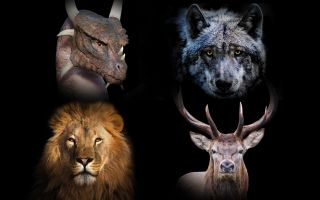 If The Animals From Game Of Thrones Houses Battled Which One