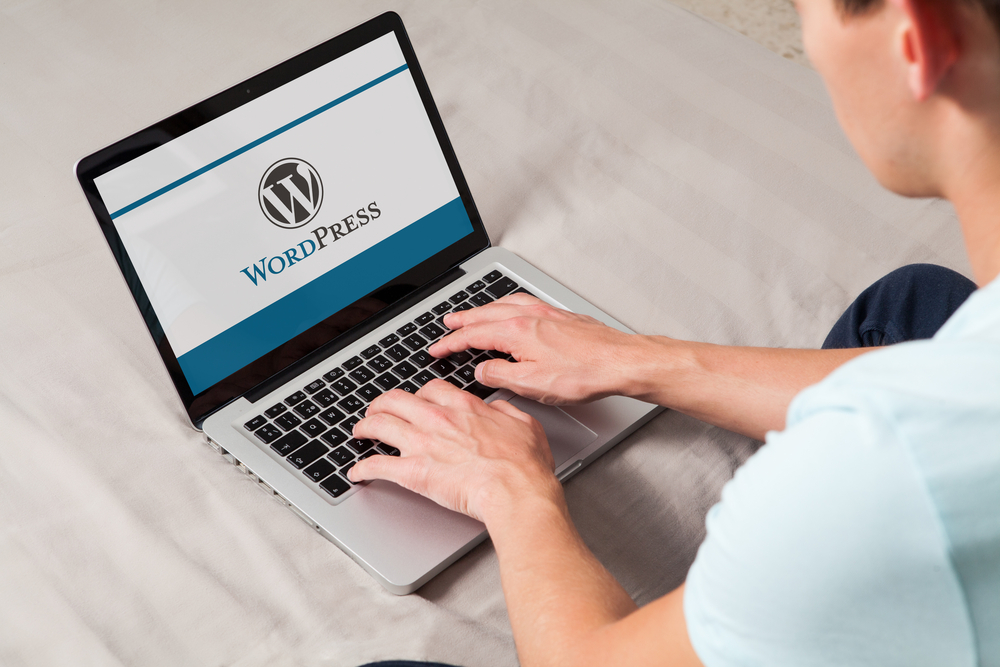 forget ai and machine learning wordpress is about to disrupt your