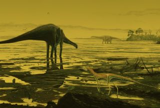 illustration of long-necked sauropod dinosaurs by lagoon